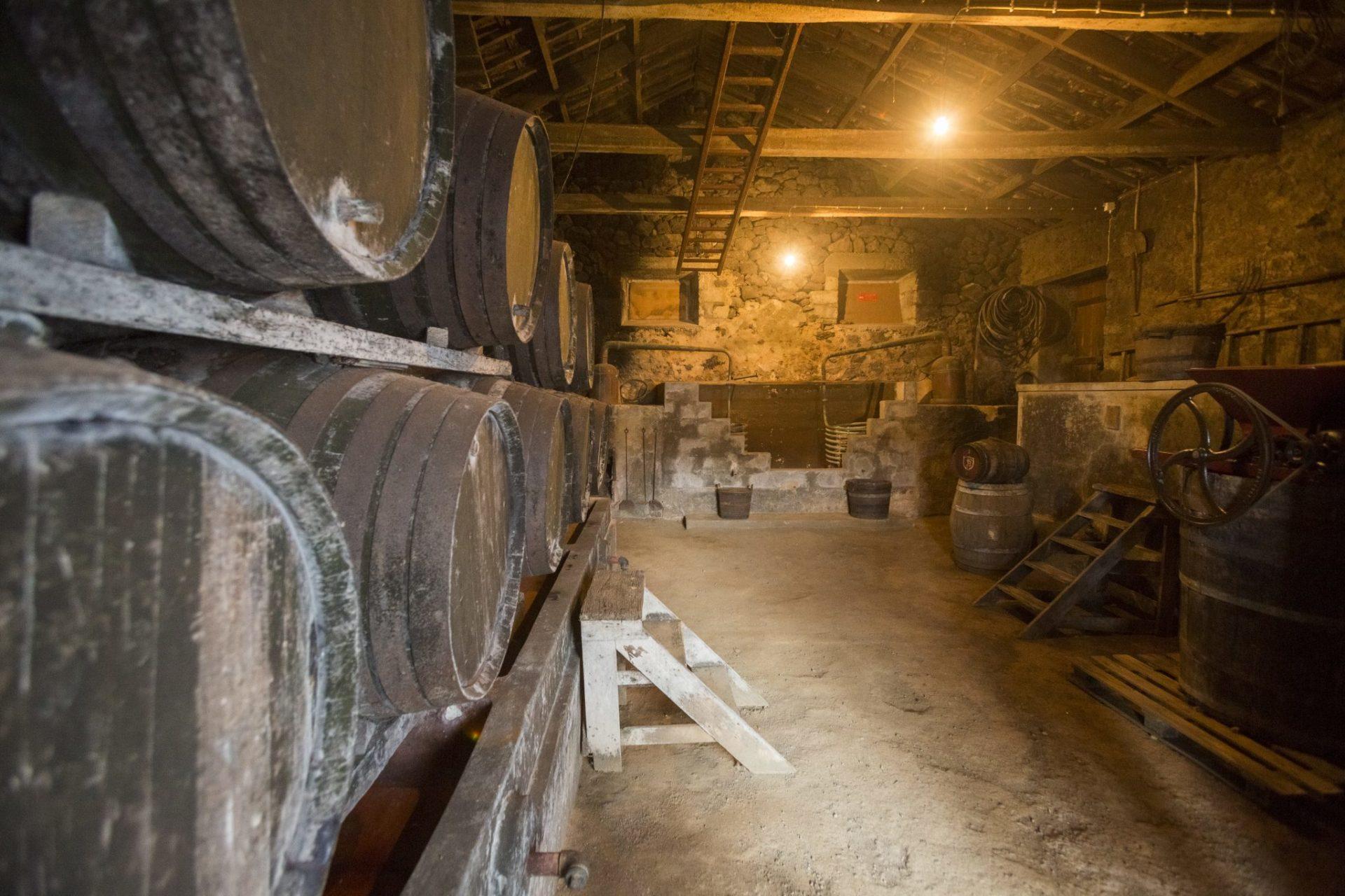 12-museu-vinho-biscoitos-2245