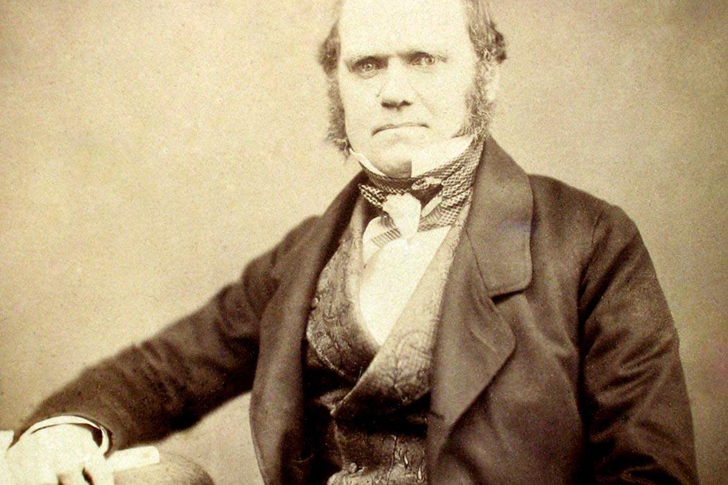 A passagem de Charles Darwin pela ilha Terceira