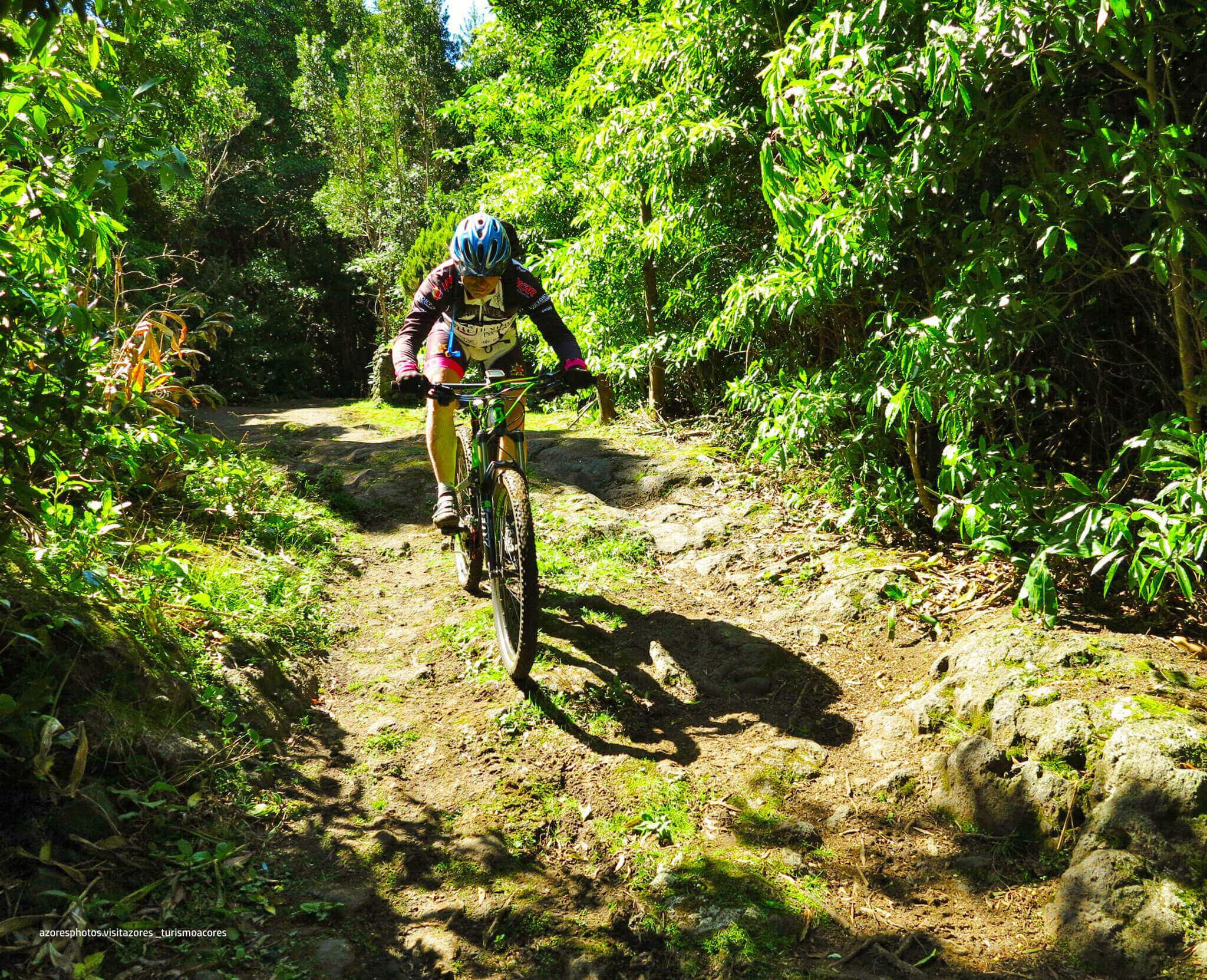 passeios-bicicleta-exploreterceira2